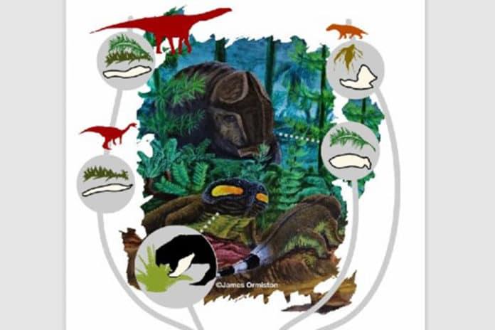 Triassic herbivores illustration