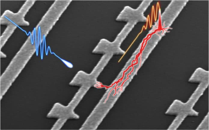 As a laser illuminates these nanometer-scale devices
