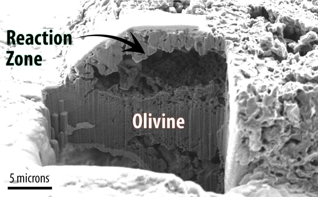An electron microscopy image