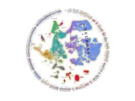 Molecular atlas