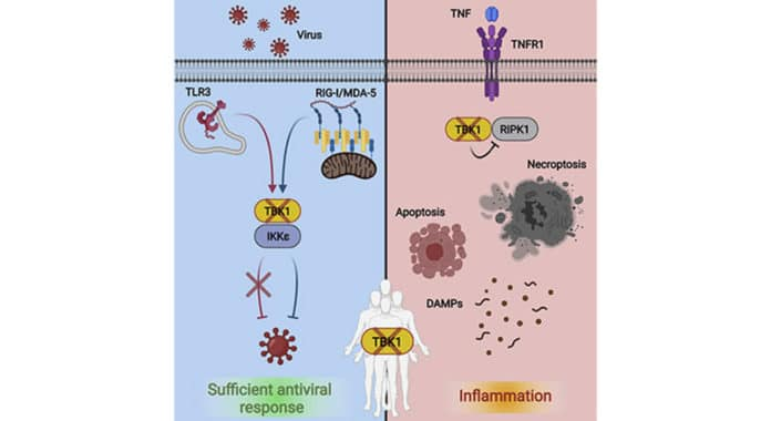 Autoinflammatory Disease