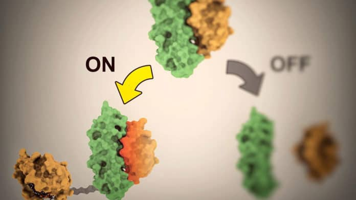 controllable proteins